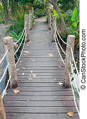Wooden rope jungle bridge