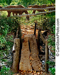 Wooden rustic bridge