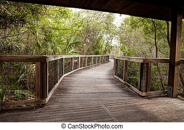 Wooden secluded, tranquil boardwalk along a marsh pond