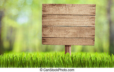 wooden sign in summer forest, park or garden