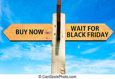 Wooden signpost with two opposite arrows over clear blue sky, Buy Now versus Wait for Black Friday messages, Sales conceptual image