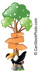 Wooden signs with toucan bird