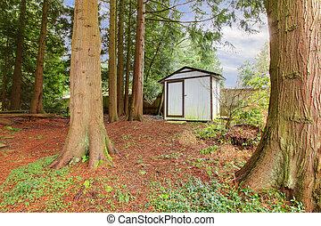 Wooden small backyard shed