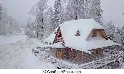 Wooden snowy house in woodland - Aerial view of Lonely...