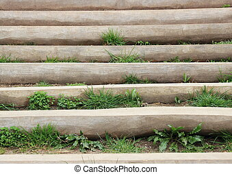Wooden stair outside with weed between steps