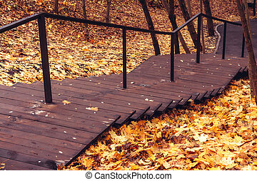 Wooden staircase in the autumn park. Bright autumn leaf