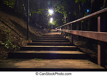 Wooden staircase in the forest at night