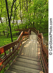 Wooden staircase in the summer Park.
