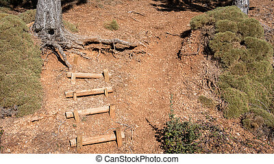 Wooden stairs in the mountain
