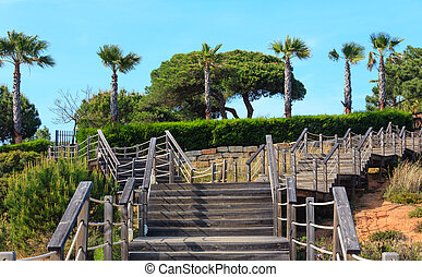 Wooden stairs to the beach.