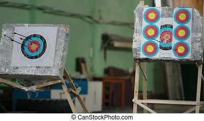 People shooting arrows at printed aim marks view