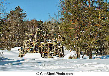 Wooden structure in the woods