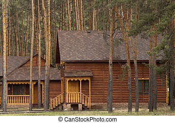 Wooden structure in the wood