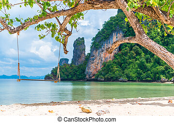 wooden swing under a tree on the beach in a beautiful paradise of Thailand