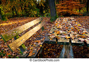 wooden table covered with yellow leaves