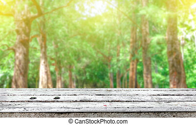 fresh tree green nature blurred background