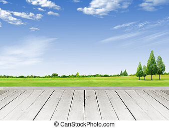 Wooden terrace looking out over a tropical cloud sky and green grass field