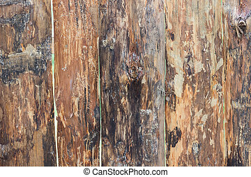 Wooden texture background.