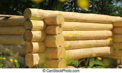 Wooden timberwork in forest