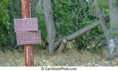 Wooden trail sign against lush trees in Provo Utah