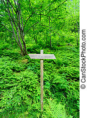 Wooden trail sign in Norway forest