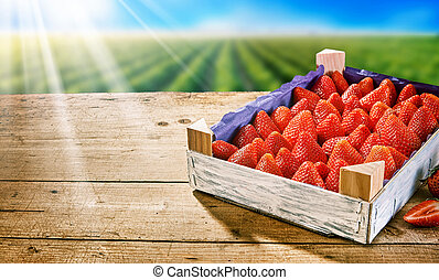 Wooden tray of fresh ripe red strawberries