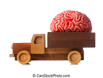 Wooden truck carries a rubber brain