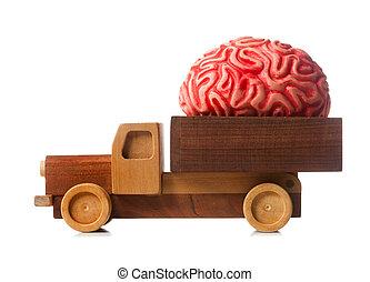 Wooden truck carries a rubber brain