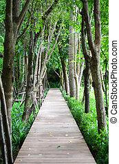 Wooden walk way in the garden