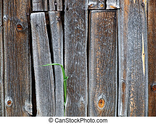 Wooden wall background - Old wooden wall - typical rustic ...