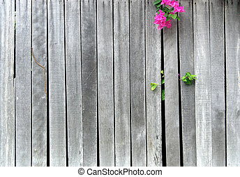 wooden wall fence with flower