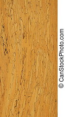 wooden wall texture and background