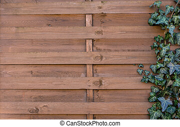 Wooden wall texture with flower frame
