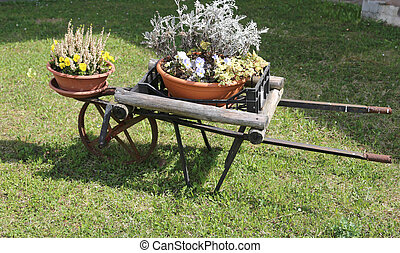 wooden wheelbarrow with colorful flower