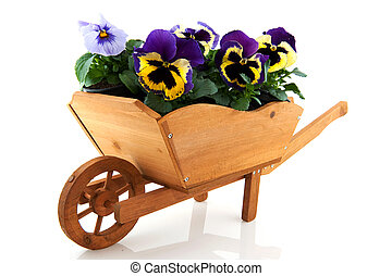 Wooden wheelbarrow with Pansies