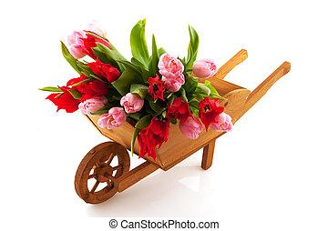 Wooden wheelbarrow with tulips