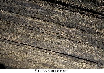 woodgrain, 背景
