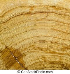 Woodgrain background texture