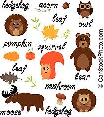 Woodland Animals - vector woodland animals with words
