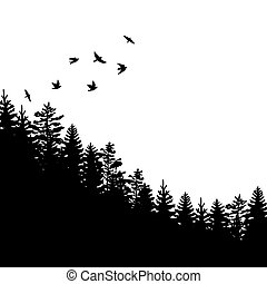 Woodland background with black silhouettes of fir trees and pines with birds