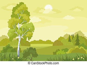 Woodland landscape with birch, fir trees and flowers.