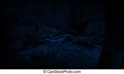 Woodland River At Night - River through the woods in the...
