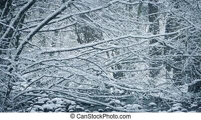 Woodland Scene In Heavy Snowfall