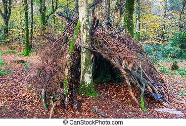 Woodland Survival Shelter - A bivouac survival shelter in...