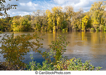 Woodlands in Autumn Along Minnesota River