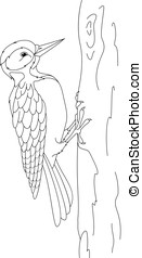 Woodpecker Coloring Page - Woodpecker on tree, on white...
