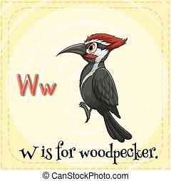 Woodpecker - Flashcard letter W is for woodpecker