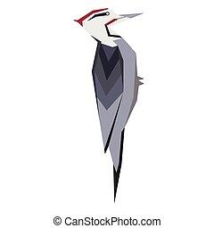 woodpecker flat illustration