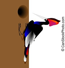 Woodpecker Making home