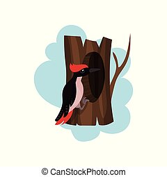 Woodpecker on a hollow tree, hollowed out old tree and cute bird vector Illustration on a white background